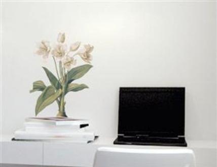 Adesivo de Parede - Flores Crinum Asiaticum