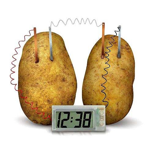 Energia Verde Relógio Digital Movido a Batatas - Veja o Vídeo